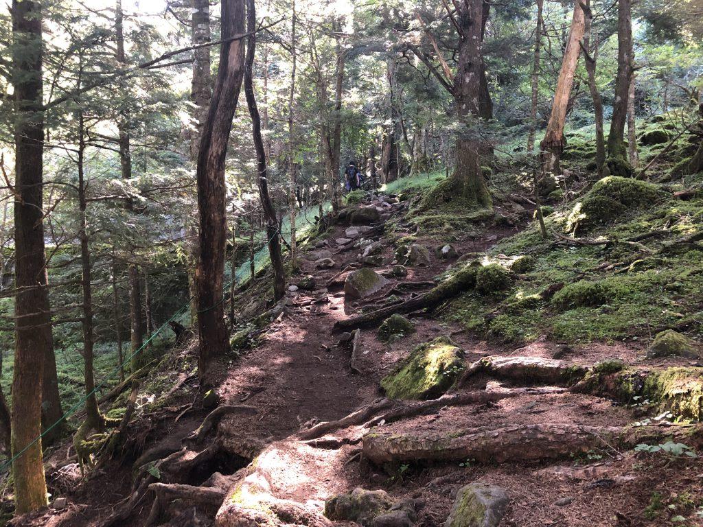 八ヶ岳連峰 美濃戸登山口